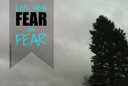 Let's label FEAR as fear. Are you in? www.LearnExploreShare.com