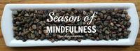 Season of Mindfulness LearnExploreShare.com